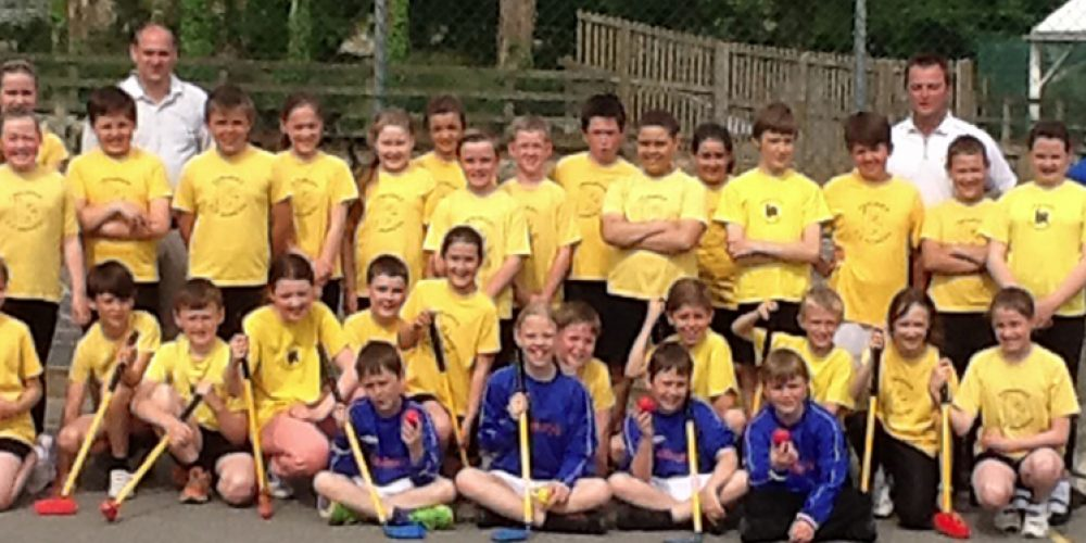 Treleigh County Primary try Tri Golf